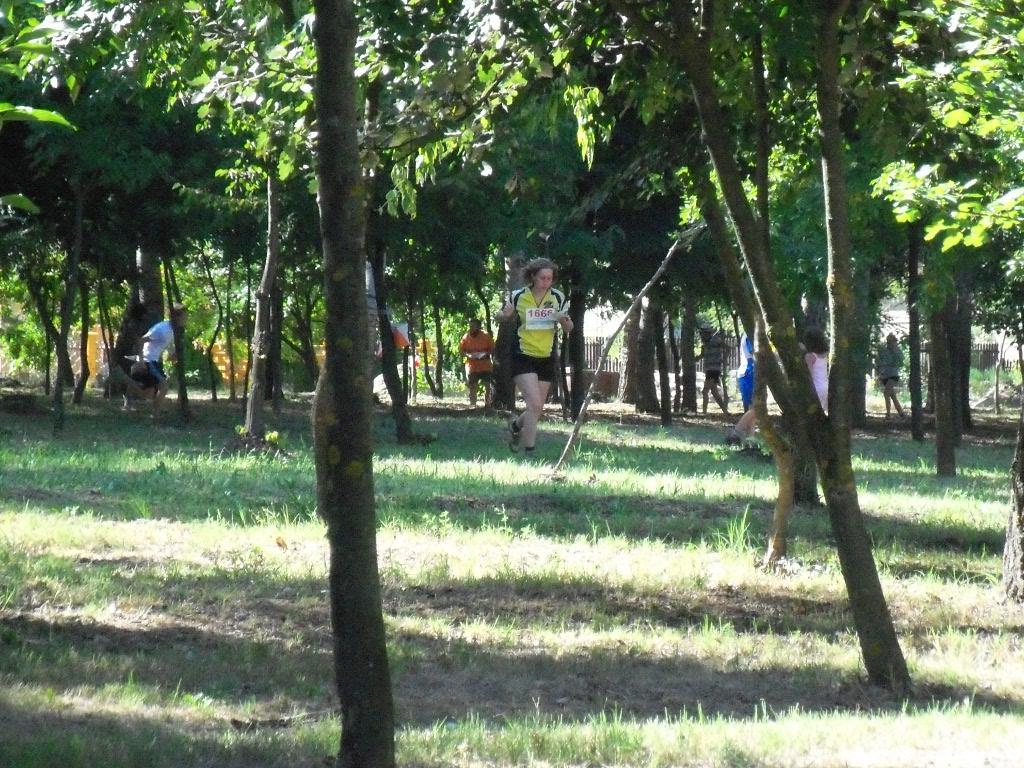 homokhat-hungria-kupa-2011-ein-kleiner-urlaubsbericht-9.jpg