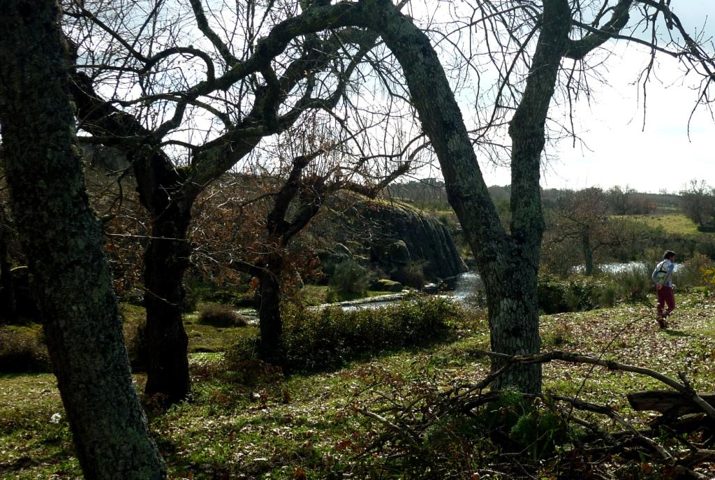winterferien-in-portugal-2.jpg