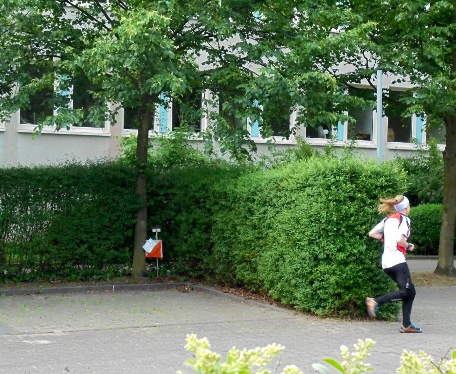 heisses-ol-wochenende-des-berliner-tsc-16.jpg