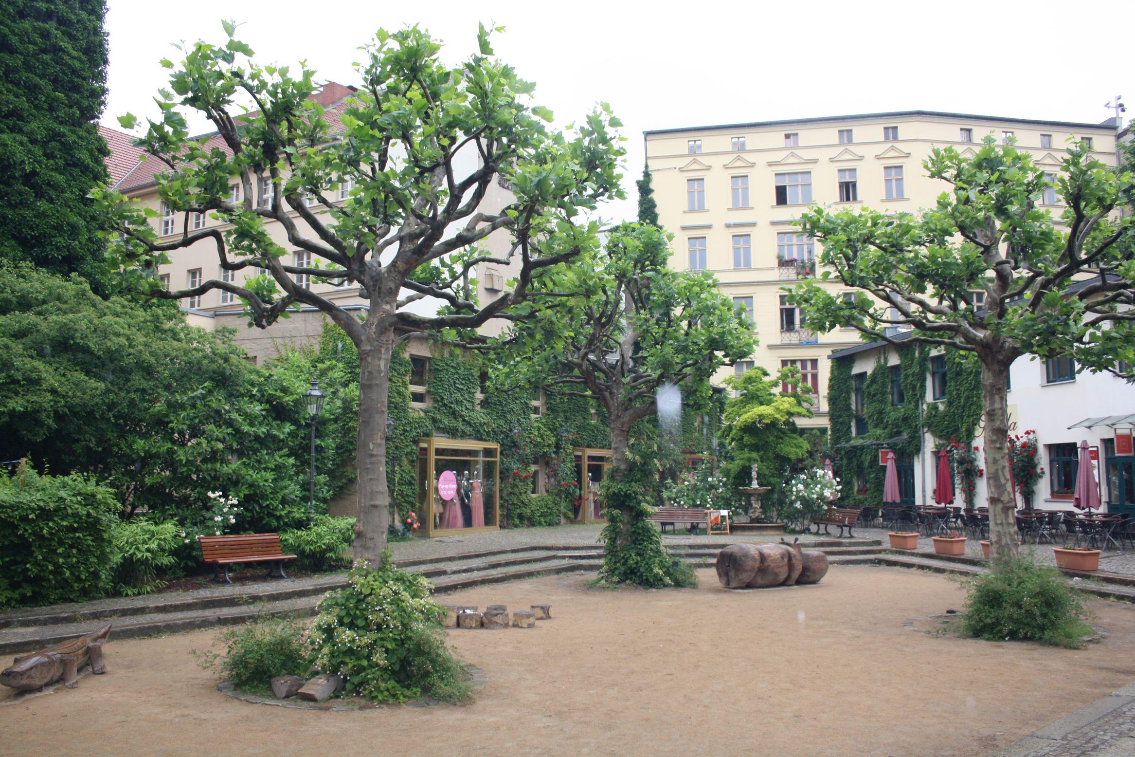gelungene-premiere-vom-berliner-city-race-sightseeing-mit-ol-karte-2.jpg